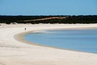Shell Beach adalah pantai unik di Shark Bay Road, Denham, Western Australia.