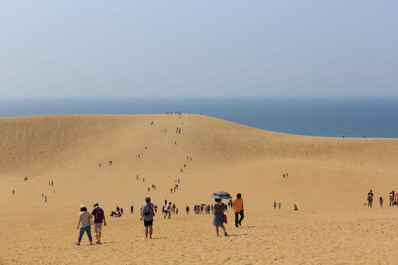 Inilah Gurun pasir Tottori di Kota Tottori, Jepang. Gurun pasir yang indah serasa di Timur Tengah saja (iStock)