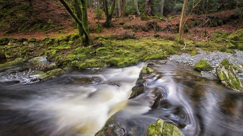 Dalam episode satu musim pertama, di dekat Tollymore Forest Park (yang juga menjadi inspirasi bagi C.S. Lewis dalam film Narnia) adalah tempat para Stark menemukan direwolves. Tempat ajaib ini dipenuhi air terjun dan taman abad ke-18 (CNN)