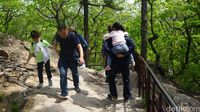Trekking di Gwongeumseong (Afif Farhan/detikTravel)