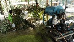 Desa di Jambi Ini Produksi 4.000 Ton Pupuk Organik Per Bulan