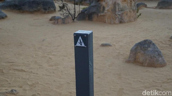 Tur ke The Pinnacles seharga AUD 169 (Rp 1,6 juta) per orang. Inilah tanda jejak hewan di sana (Masaul/detikcom)