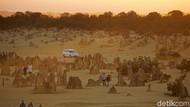 Foto The Pinnacles, Gurun Ajaib dari Australia Barat