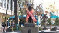 Hachiko, Lambang Kesetiaan yang Mendunia