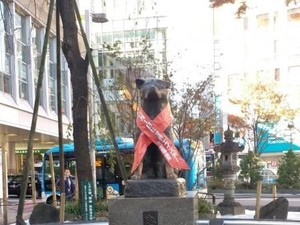 Seputar Hachiko, Anjing yang Setia Menunggu Tuannya Selama 10 Tahun
