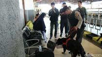 Anjing Pelacak Siaga di Stasiun Cirebon Selama Musim Mudik