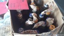 Polisi Petakan Tugas Para Habib di Kasus Pembakaran Polsek di Sampang