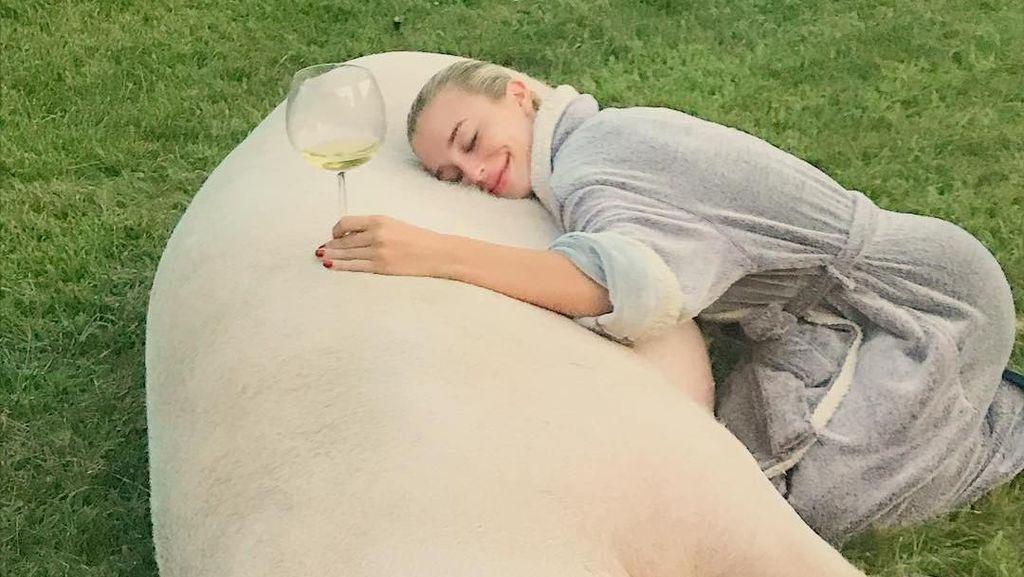 Foto: Selebgram Seksi yang Jadi Atensi karena Pelihara Babi Berukuran Jumbo