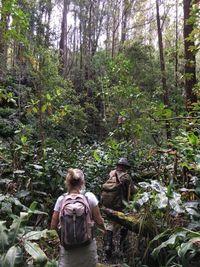 Tim SAR menembus hutan yang lebat untuk menemukan Amanda