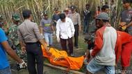 Berniat Bakar Daun Tebu Kering, Petani Ini Justru Tewas Terbakar