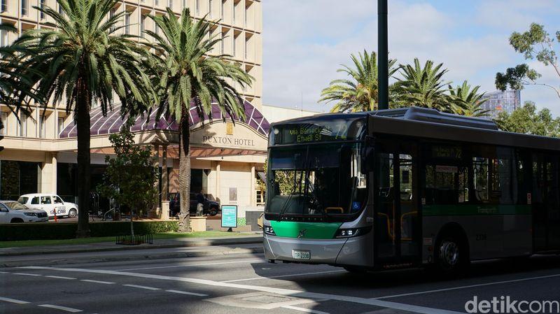 Transperth menyediakan bus gratis untuk warga dan wisatawan di pusat kota. Inilah bus Perth Central Area Transit (CAT) (Ahmad Masaul Khoiri/detikcom)