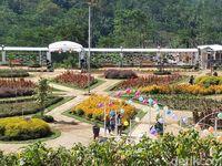 Mudik Ke Boyolali Coba Main Ke Taman Cantik Ini