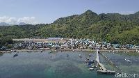 Mengenal Pulau Rinca, Tempat Jokowi Melihat Komodo