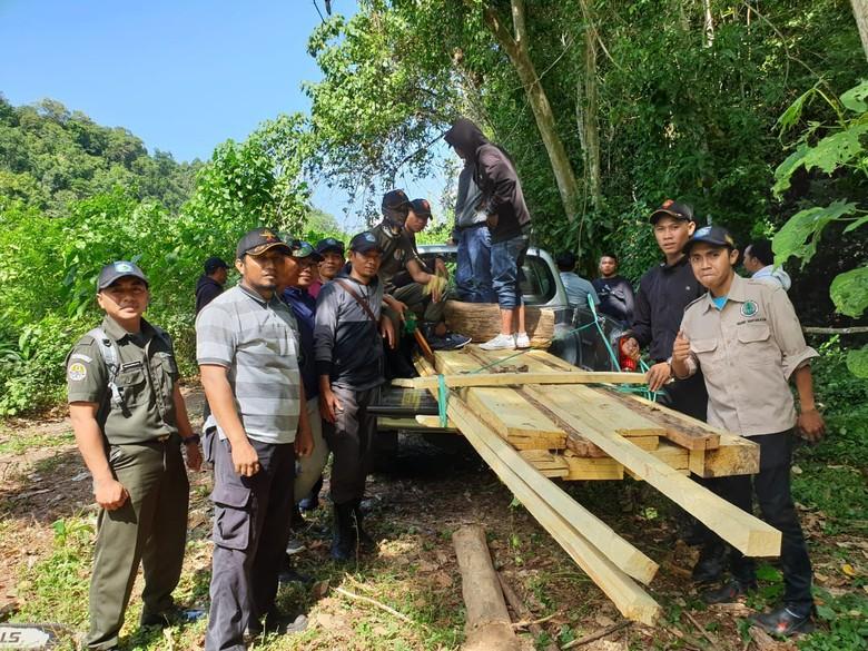 Polisi Tangkap 3 Orang Pelaku Pembalakan Liar di Sumbawa Barat