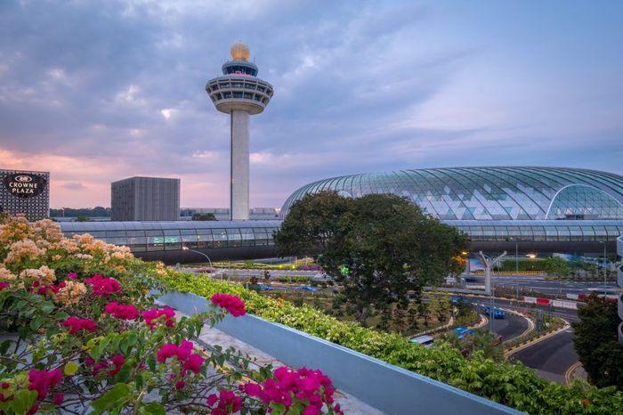 Bandar Udara Internasional Changi Singapura jadi salah satu bandara dengan arsitektur yang tak cuma menawan tetapi juga canggih. Dok. www.architecturaldigest.in.