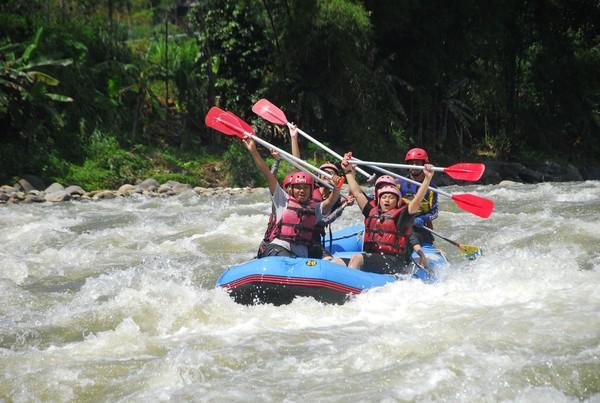 Kamu yang suka tantangan bisa mencoba The Pikas Adventure Resort sebagai arena uji nyali! (Uje Hartono/detikcom)