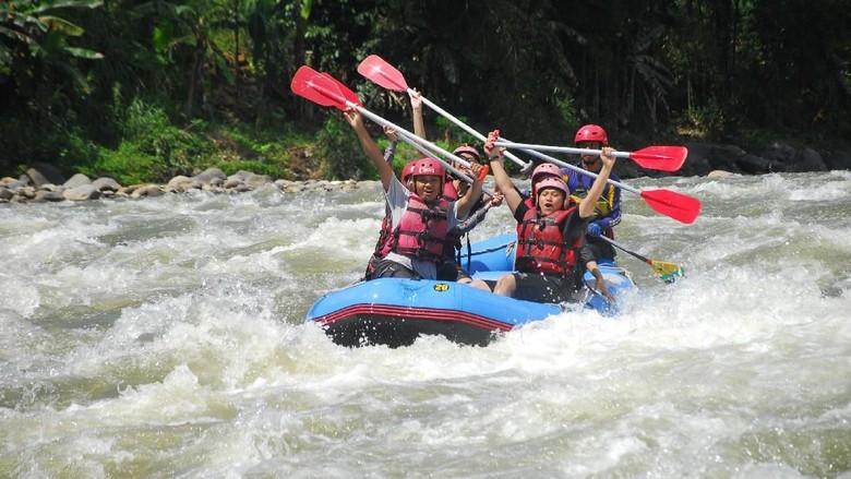Arung jeram di Sungai Serayu, Banjarnegara (Uje Hartono/detikcom)