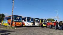 Pak Jokowi, Pengusaha Bus Minta Sopir dan Kernet Dapat BLT