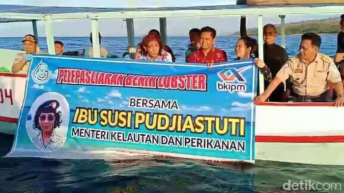 Menteri Susi Pudjiastuti Lepasliaran Baby Lobster/Foto: Ardian Fanani