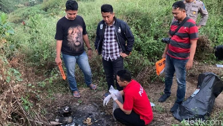 Tengkorak Manusia Bekas Dibakar Ditemukan Pencari Rumput di Mojokerto