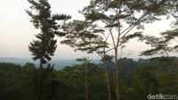 Para pemudik yang mampir untuk beristirahat menjelang waktu berbuka, bisa menyaksikan indahnya pemandangan (Aji Kusuma/detikcom)