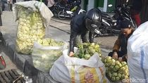 Besok Lebaran, Pedagang Bungkus Ketupat di Garut Marema