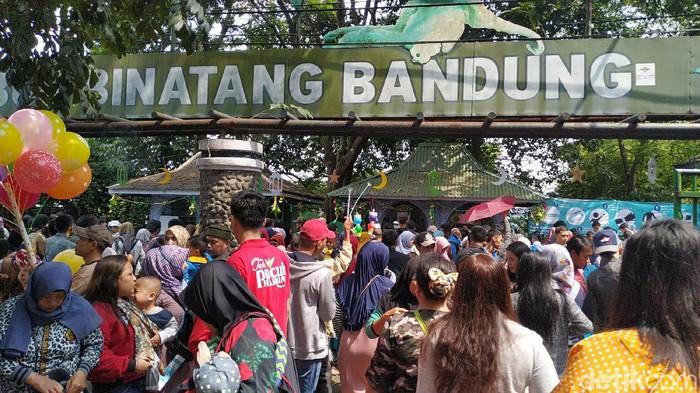 Kebun Binatang Bandung masih jadi favorit berlibur warga saat libur lebaran.