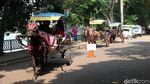 Delman dan Perahu Bebek Paling Diminati di Setu Babakan
