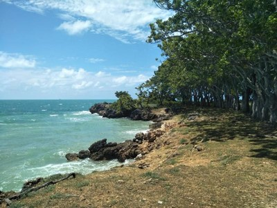 Pantai di Madura Indah Juga Ya!
