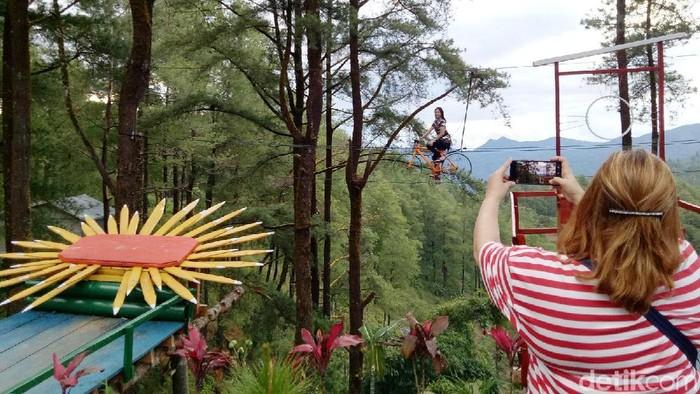 Hutan Malino