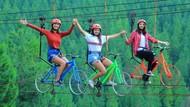 Foto: Spot-spot Paling Instagramable di Lembang
