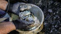 Spesimen Emas Terbesar Ditemukan Lagi di Australia Barat