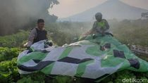 Bahaya! Balon Udara Liar Masuk 2 Jalur Penerbangan Menuju Yogya