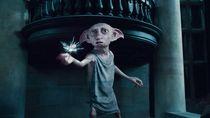 Penampakan Makhluk Mirip Dobby Harry Potter Gegerkan Facebook