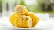 Cegah Anemia, Jagung Enak Diolah Jadi Salad Hingga Sup Krim