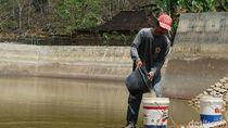 Harga Air Mahal, Warga Wonogiri Pilih Tempuh Belasan Kilometer ke Telaga