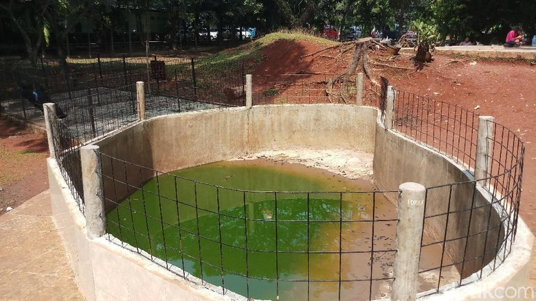 Kostrad Pastikan Mini Zoo yang Viral di Depok Sudah Dibersihkan