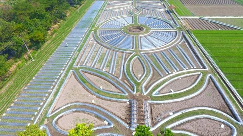 Wisata crop circle di Kediri (khofifah.ip/hsymdfq/Instagram)