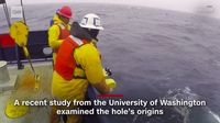 Tim ilmuwan dari Universitas Washington (Screenshot CNN)