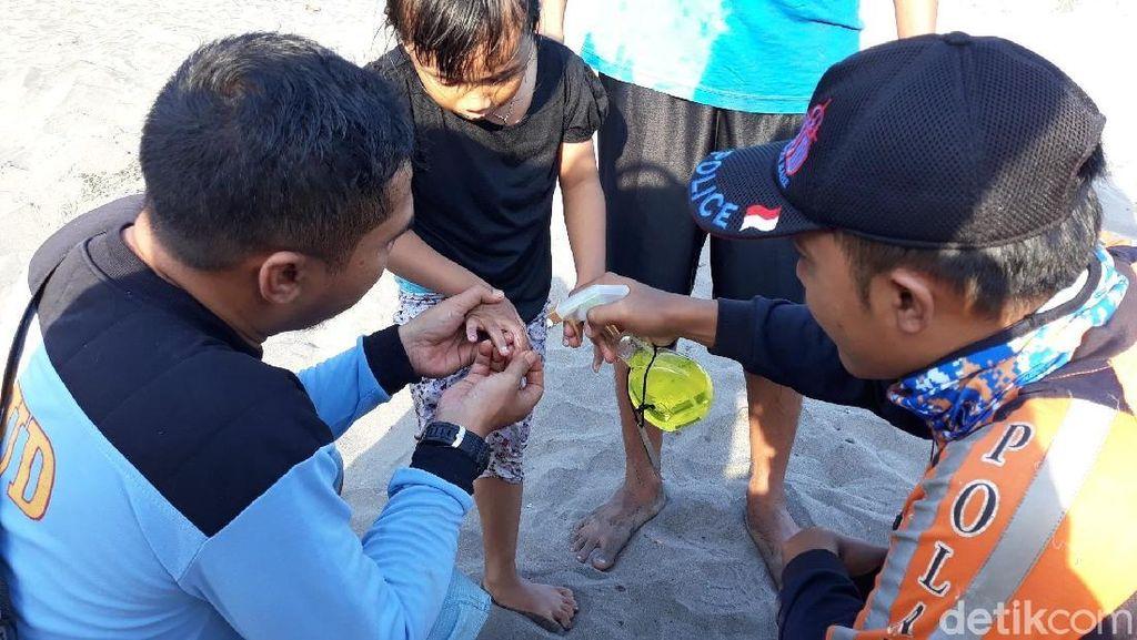 220 Wisatawan Tersengat Ubur-ubur di Parangtritis
