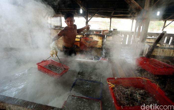 Seorang pekerja nampak sibuk mengolah ikan teri air menjadi ikan asin di Blok Pengasinan Muara Angke, Penjaringan, Jakarta Utara.