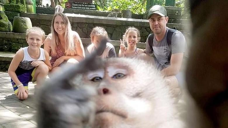 Image result for turis foto ada monyet di tengah
