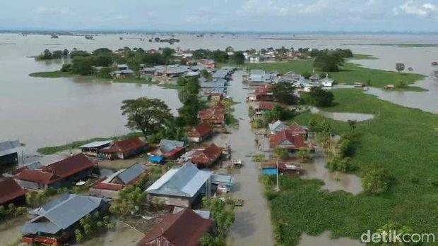 Rumah Korban Banjir di Sidrap Diserbu Eceng Gondok