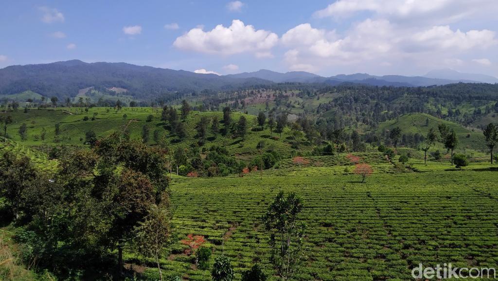Keindahan Bandung Selatan yang Tak Banyak Orang Tahu