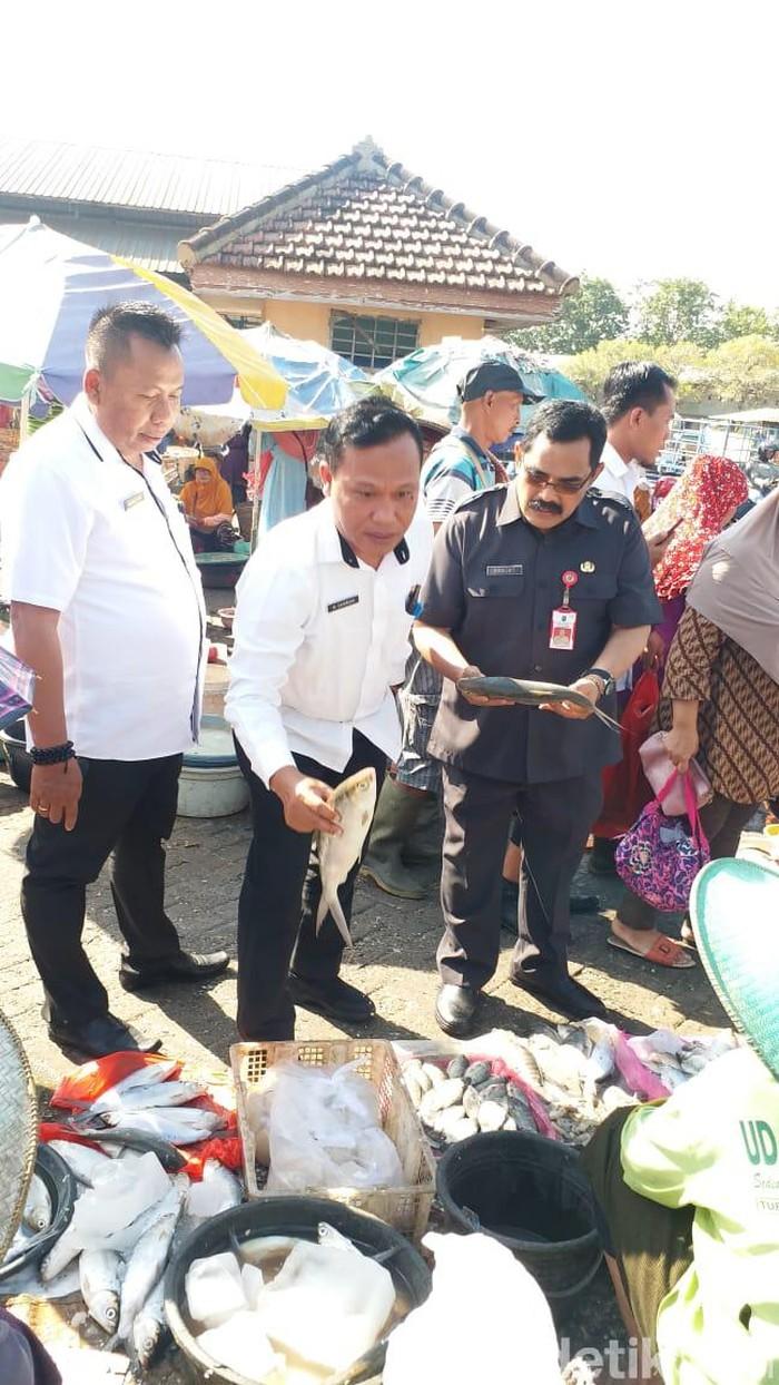 Harga ikan bandeng di Lamongan sempat terjun bebas/Foto: Eko Sudjarwo