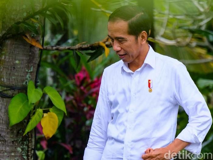 Jokowi dan Jan Ethes di Ubud Bali (Andhika/detikcom)