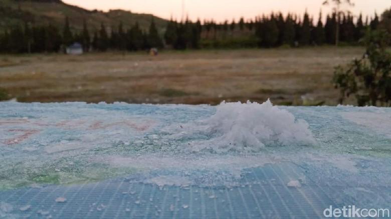 Suhu Minus 1 Derajat di Dieng, Perkebunan Kentang Masih Aman