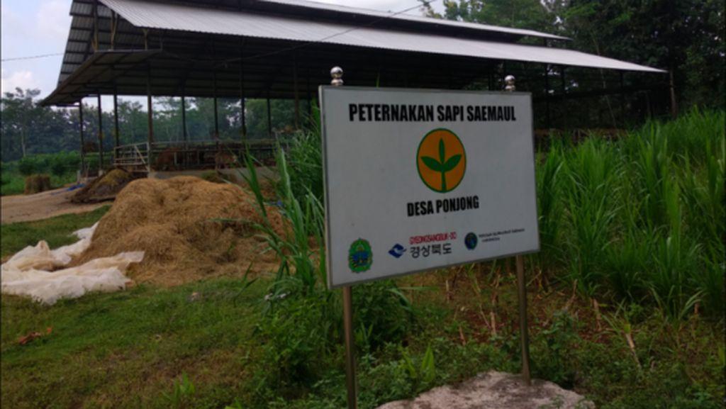 Saemaul Undong di Indonesia