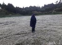 Embun es di Dieng pada tahun 2018 (Uje Hartono/detikcom)