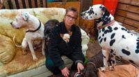 Kisah Wanita yang Hampir Bangkrut karena Rawat 106 Anjing Sendirian